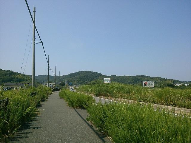 KIMG1195.JPG